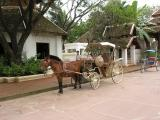 Horse and me cart