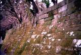 Japan014-01.jpg