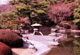 Japan059-01.jpg