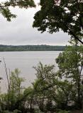 2005-06-28~ Fresh Pond