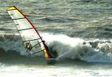 windsurf 11.jpg