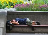 Tired Tourist