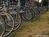 Bycicle Paradise