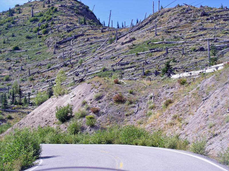 The devastation from Mt. St. Helens