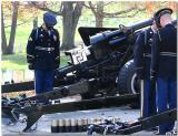 Veterans Day Washington, DC