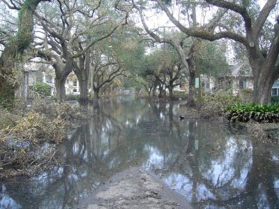 State-Street-with-Water-Receding Sometime Between August 30 and September 21