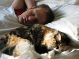 A-Boy-and-His-Cat._My Grandson and Caiteri