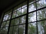 Watching the Hurricane Rita