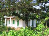 Pitot House