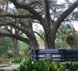 Statue of woman and the live oaks October 3