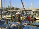 West End Marina-2