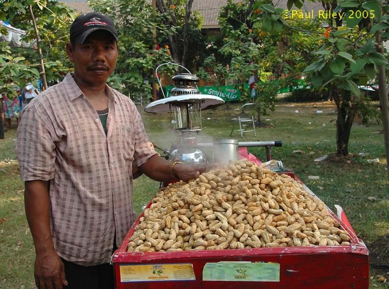 Roasted Peanut Seller