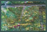 Fish_0989.jpg