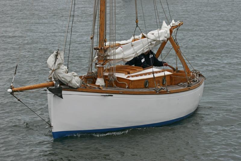 Gwenvidig