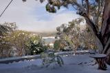 Snow scene_6626.jpg