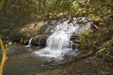 Waterfall 3_0316.jpg