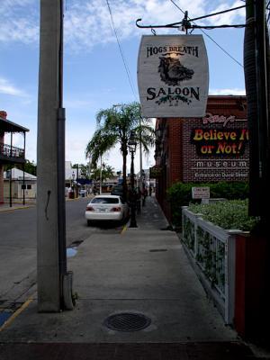 Hogs Breath Saloon....Believe it or Not!