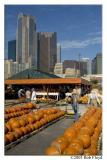 10/17 - Farmer's Market