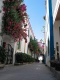 Poerto Mogan Street