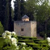 Tower from Generalife
