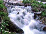 Spring runoff
