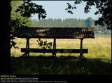 Aalholm Skov 20040829 0001 PS web.jpg