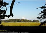 Aalholm Skov 20040829 0016 PS web.jpg