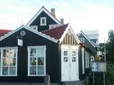 Reykjavik's faces