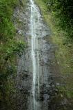 Generic Manoa Falls