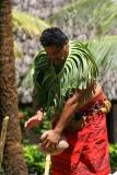 Samoan Man - Husking the coconut.