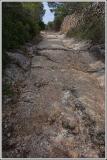 Rutted walkway