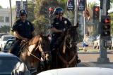 Police on horseback and protestor