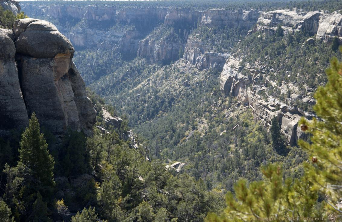 Canyon in Mesa Verde