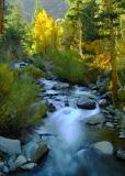 9763-Glow-at-Bishop-Creek.jpg