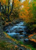 9596-Fall-Stream-3.jpg