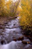 _DSC9594-McGee-Creek.jpg