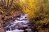 _DSC9593-McGee-Creek-2.jpg