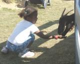 A Kid & A Goat