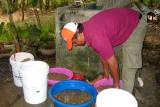 Washing sand/gravel