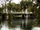 Autumn, Public Garden III