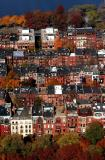 Fall in Back Bay
