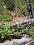 Idaho Trails Near Baumgardner