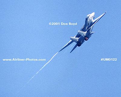 2001 - military aviation stock photo #UM0122