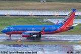 Southwest Airlines B737-7H4 N701GS with FLL's EMAS in the background aviation airline stock photo #6340