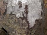 Cool Glacier Terminus (GlacierPk092105-015adj.jpg)