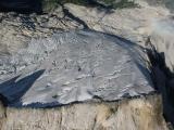 Mutchler Glacier (Mutchler092705-15adj.jpg)