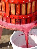 Home Wine-making