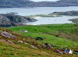 Irish Coastal Life.jpg