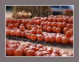 Pumpkins For All