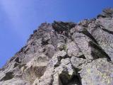 Choucas narquois, au sommet de la première cheminée